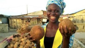 Nigeria's BOOMING Coconut business!